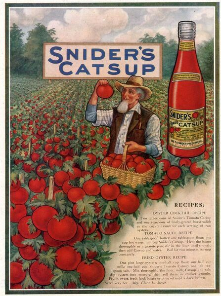 Sniders Catsup 1920s USA CC tomatoes sauce farmers farming recipes