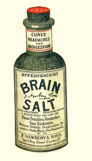 1890s UK brain salt headaches humour medicine indigestion medical
