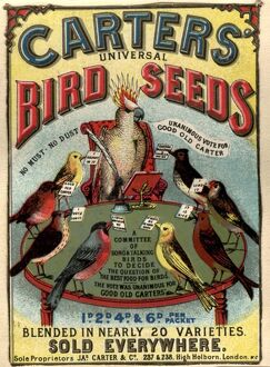 1890s UK carters bird seed birds poetry