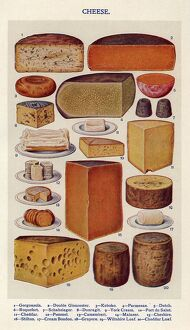 Cheese 1900s UK Isabella Beeton Mrs BeetonA•s Book of Household Management cooking
