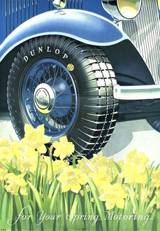 Dunlop 1934 1930s UK tyres daffodils