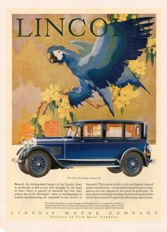 Lincoln 1928 1920s USA cc cars parrots birds